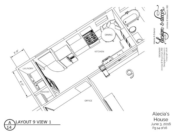 AleciaOptions6-3-16_Page_14